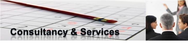 IT Biz Global Service Delivery for GuiXT and JReport Solutions